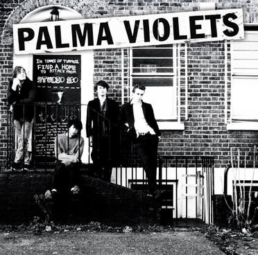 palma violets-180